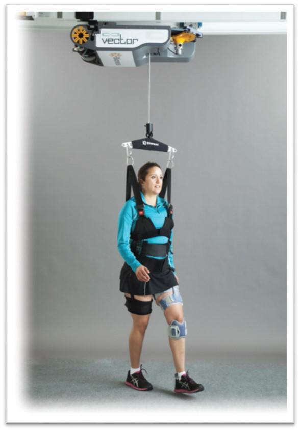 Rehabilitation Walking Device